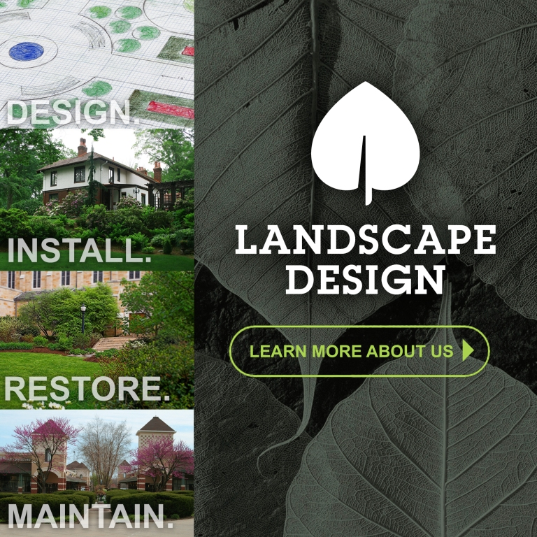 Landscape- Living the Grove Ad-Recovered